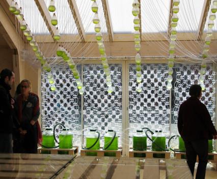 Living algae through a textile photosynthesising to produce bio-fuel