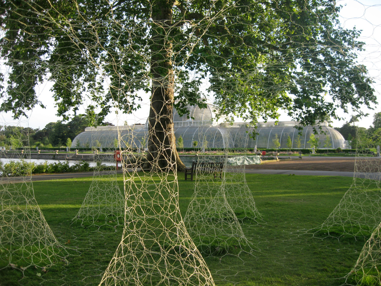Botanically inspired architecture at Kew Gardens