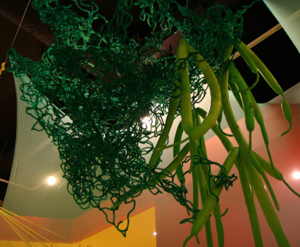 Exhibition and installation for children that celebrates the relationship between bacteria and humans