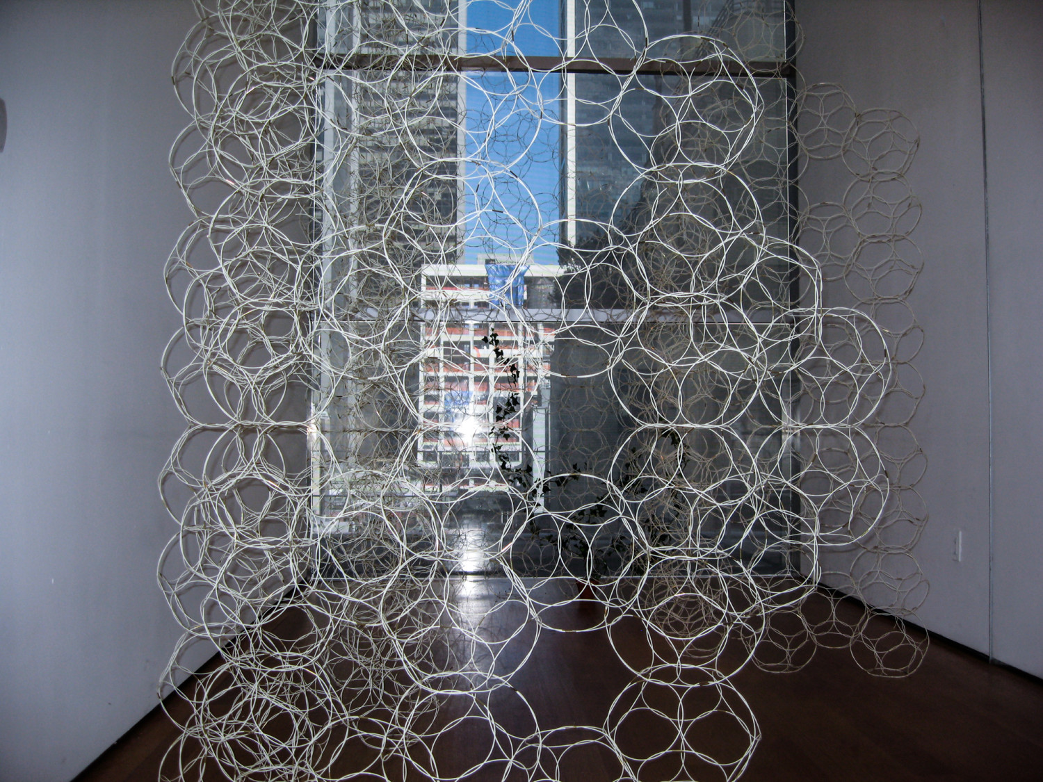 We exhibited BioWall in a curved spatial configuration. A series of free standing, curved walls were placed at the entrance to the gallery inviting people to walk between the latticework.