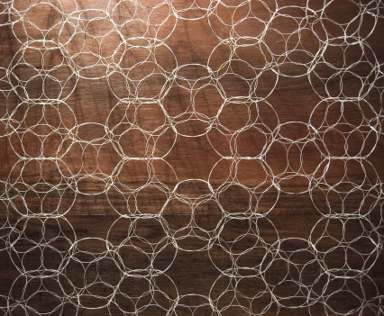 Biowall is a hand woven structure that can be crafted into lace-like surfaces of any dimension and form and provides a scaffold for life.